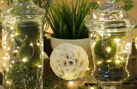 70594a0e4005af4b73a256d00a8e3a6a--glass-cloche-centerpiece-fairy-light-centerpieces