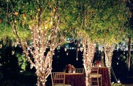 fairy-lights-in-trees-wedding-tree-lights-string-lights-in-trees-wedding-tree-fairy-lights-fairy-lights-around-trees-copper-fairy-lights-christmas-tree